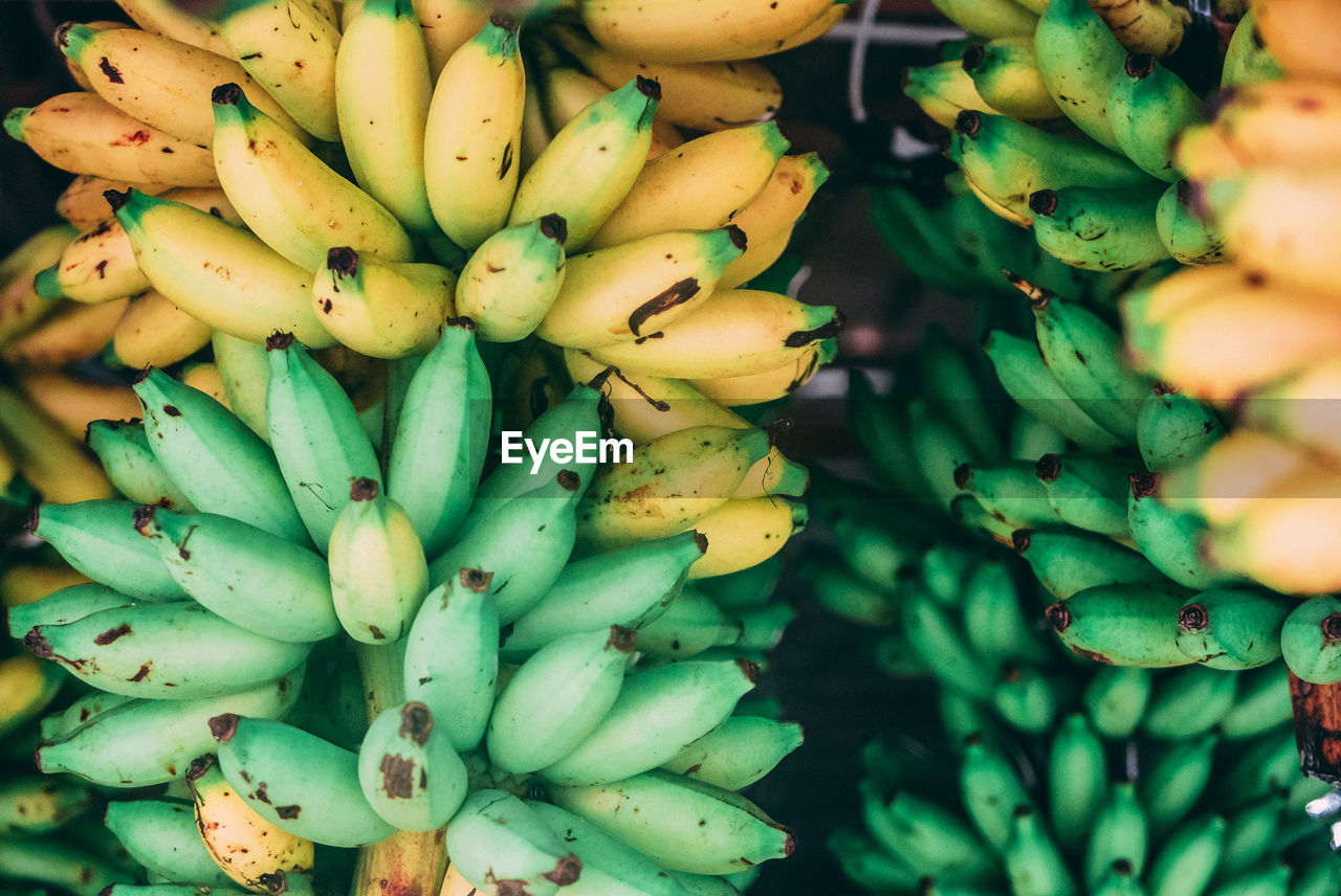 healthy eating, freshness, fruit, food and drink, wellbeing, food, banana, full frame, large group of objects, green color, no people, market, abundance, retail, close-up, for sale, day, market stall, backgrounds, bunch, ripe