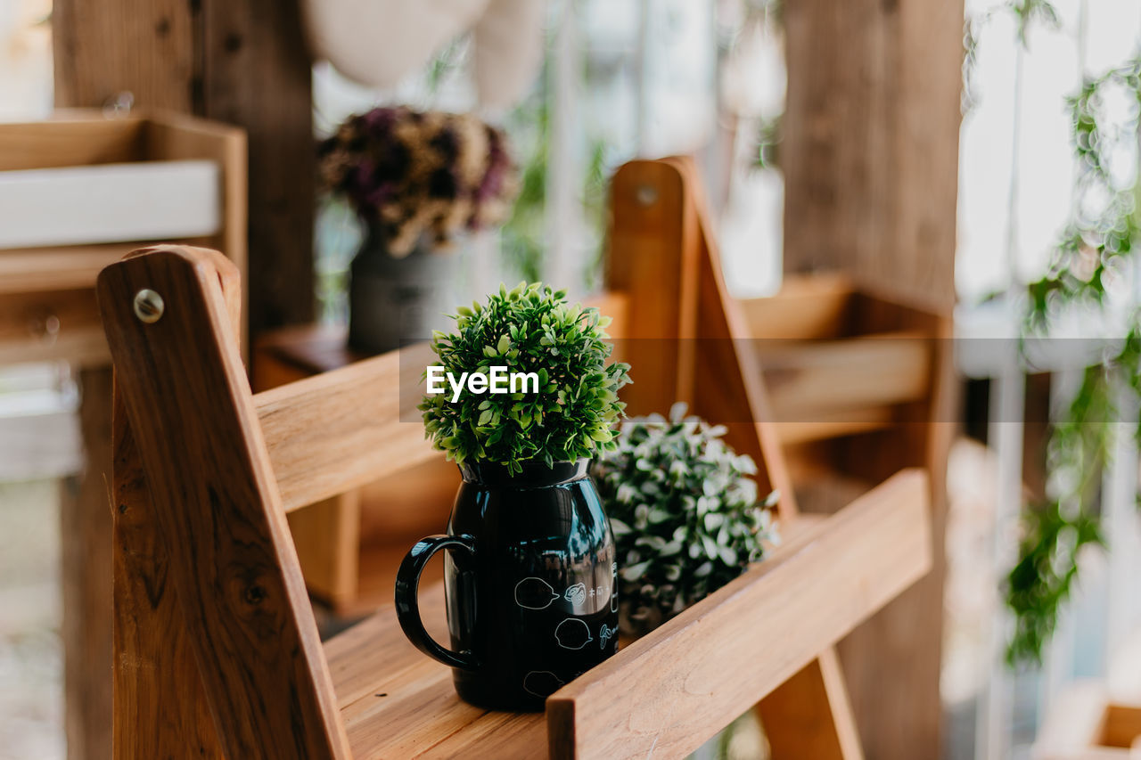 Close-Up Of Plant With Container In Wooden Tray On Table