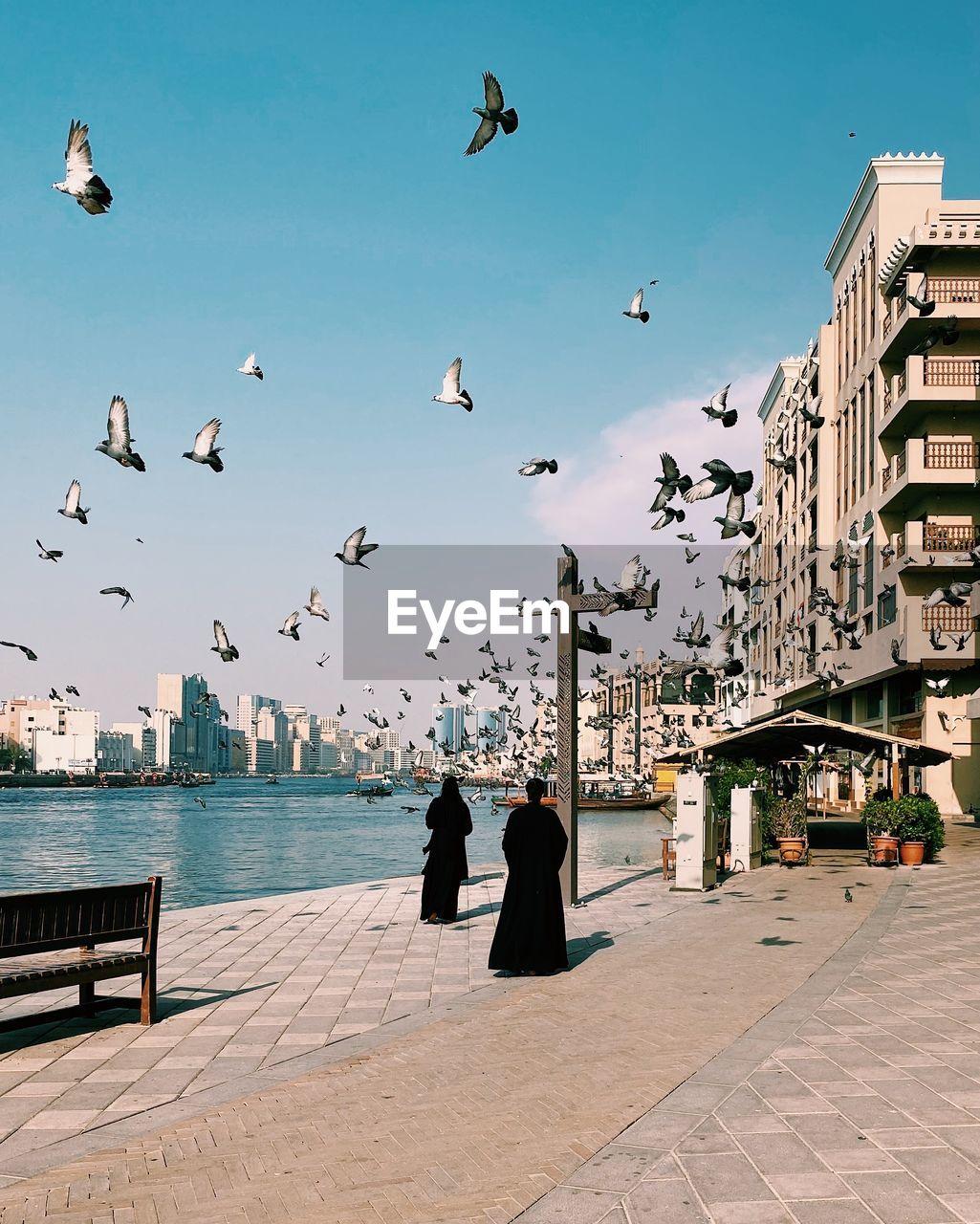 Arabic women walking near the dubai creek in bur dubai with pigeons flying above their heads.