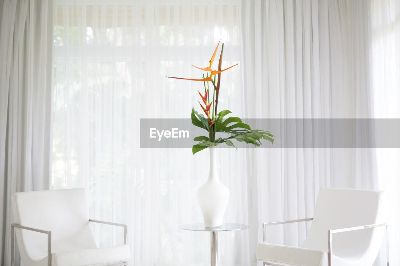 Orange flower on table between two armchairs