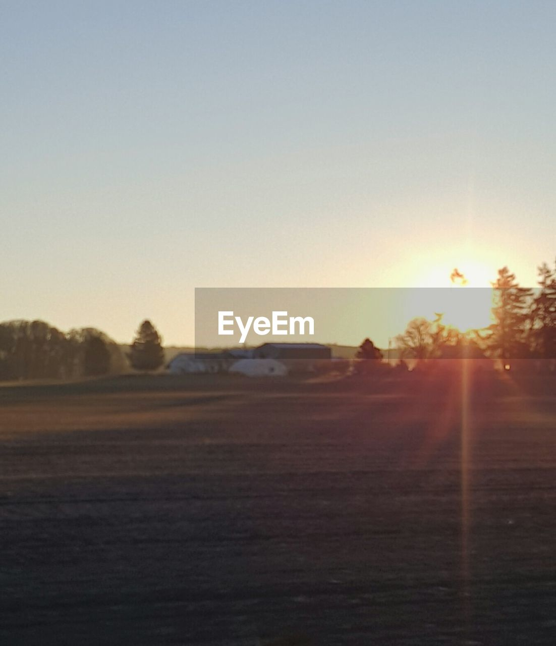 sky, sunset, nature, clear sky, copy space, tranquility, plant, tranquil scene, field, scenics - nature, landscape, tree, land, sunlight, environment, no people, sun, beauty in nature, lens flare, outdoors