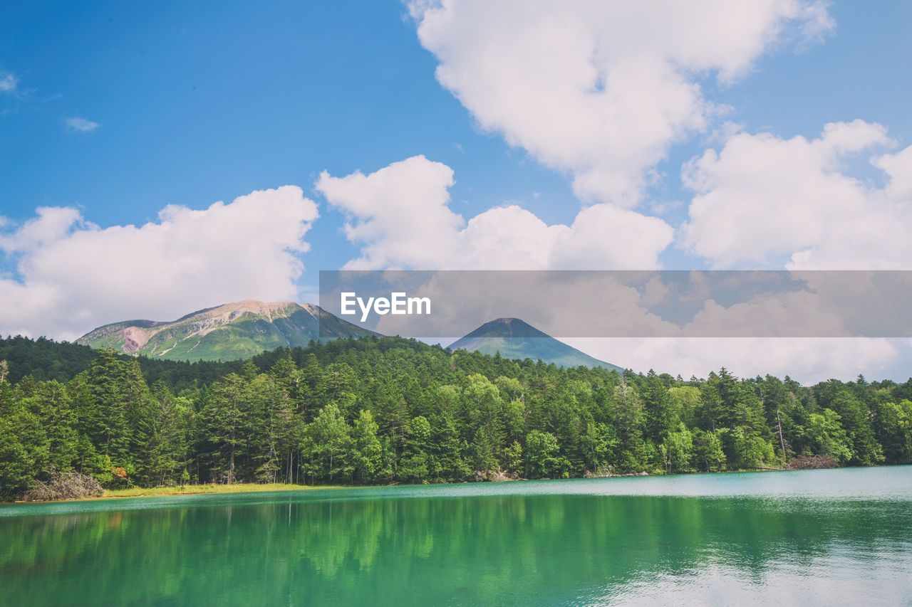 sky, cloud - sky, beauty in nature, mountain, scenics - nature, water, tree, plant, tranquil scene, tranquility, lake, non-urban scene, nature, day, no people, waterfront, green color, idyllic, growth, outdoors, turquoise colored, mountain peak