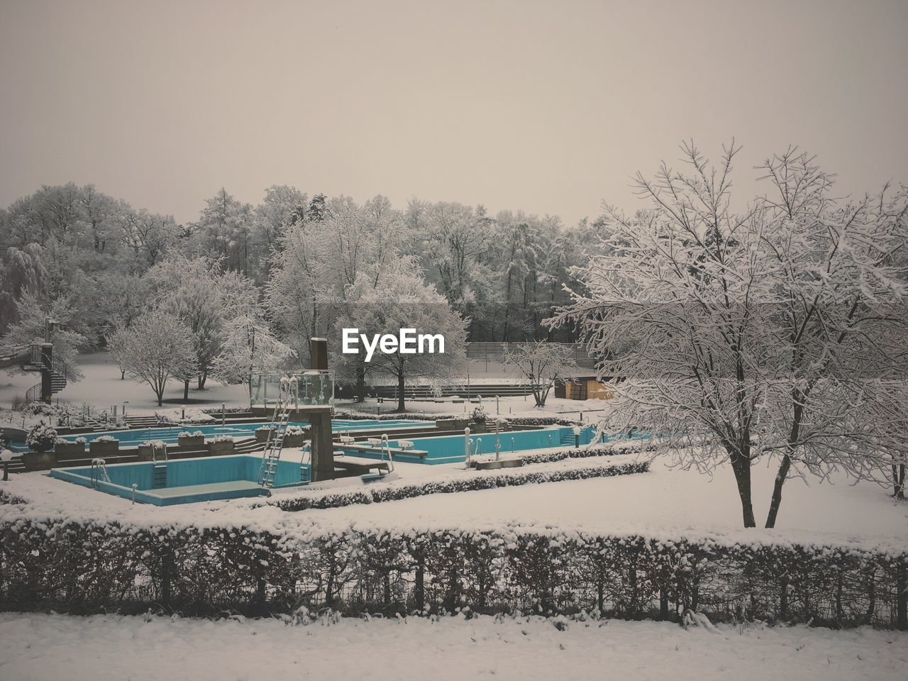 tree, winter, cold temperature, snow, nature, bare tree, beauty in nature, weather, outdoors, tranquility, no people, tranquil scene, branch, day, scenics, clear sky, swimming pool, sky