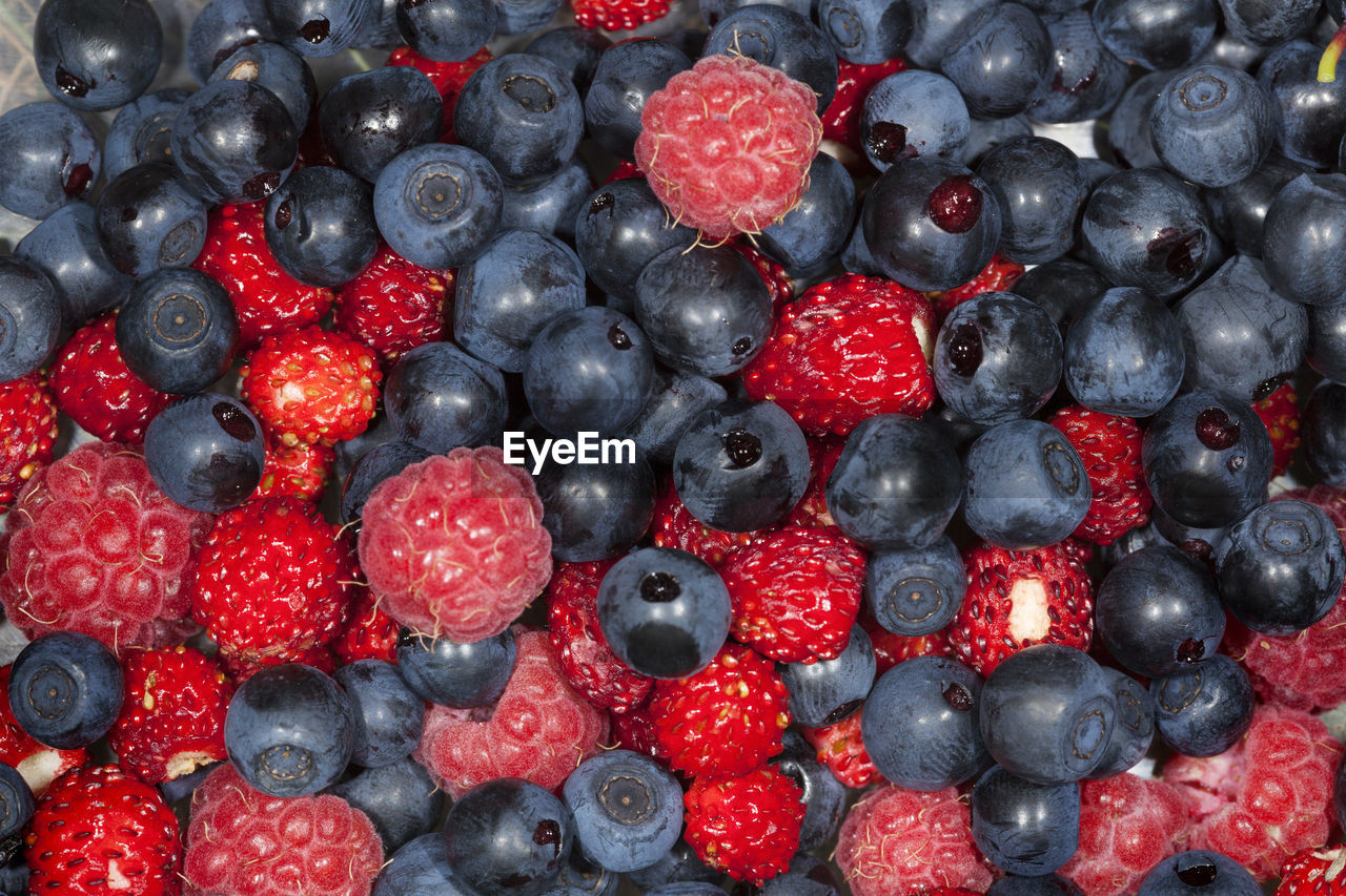 Freshly collected blueberry and the raspberry fruit