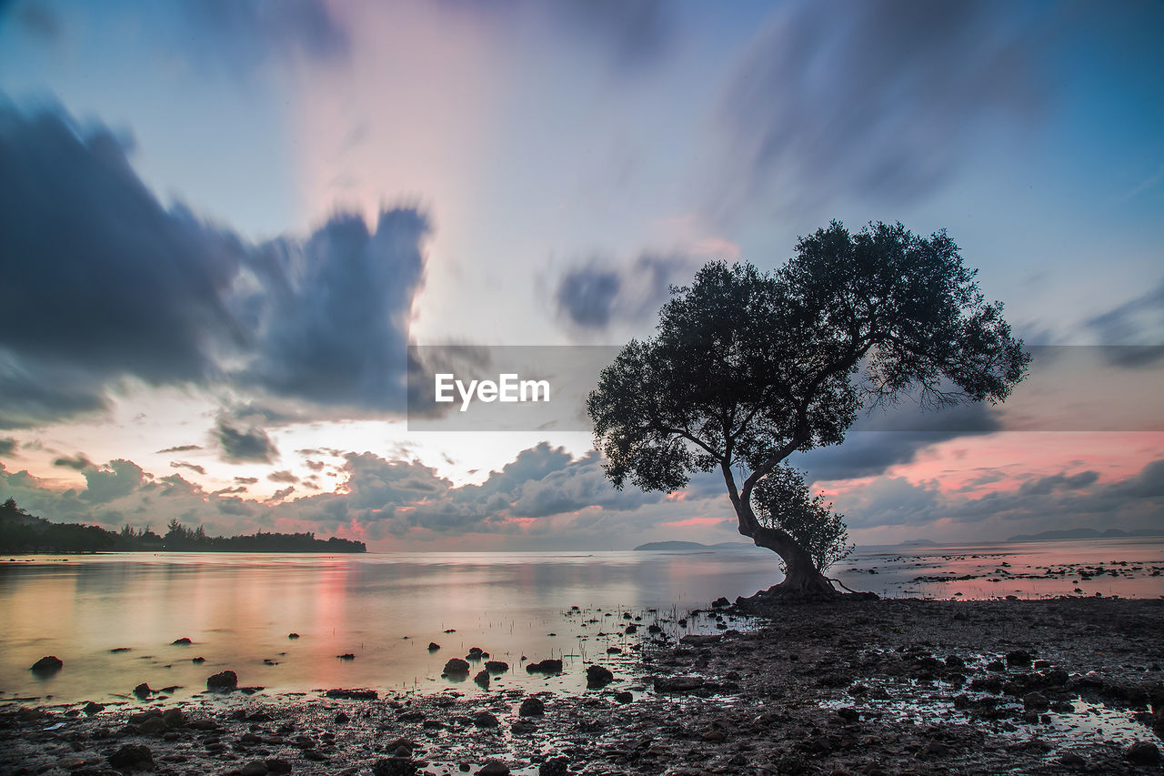 sky, cloud - sky, beauty in nature, water, scenics - nature, sunset, tranquility, tranquil scene, nature, tree, lake, no people, plant, land, non-urban scene, reflection, outdoors, idyllic