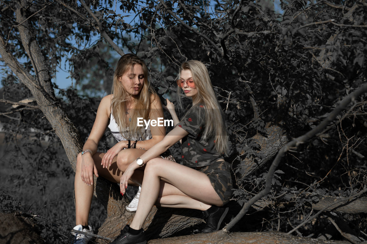 Female Friends Sitting On Log Against Trees In Forest