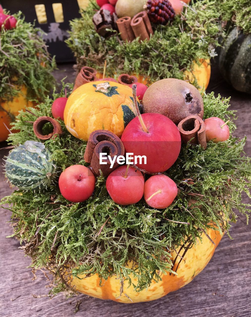 HIGH ANGLE VIEW OF PUMPKINS IN POTTED PLANT
