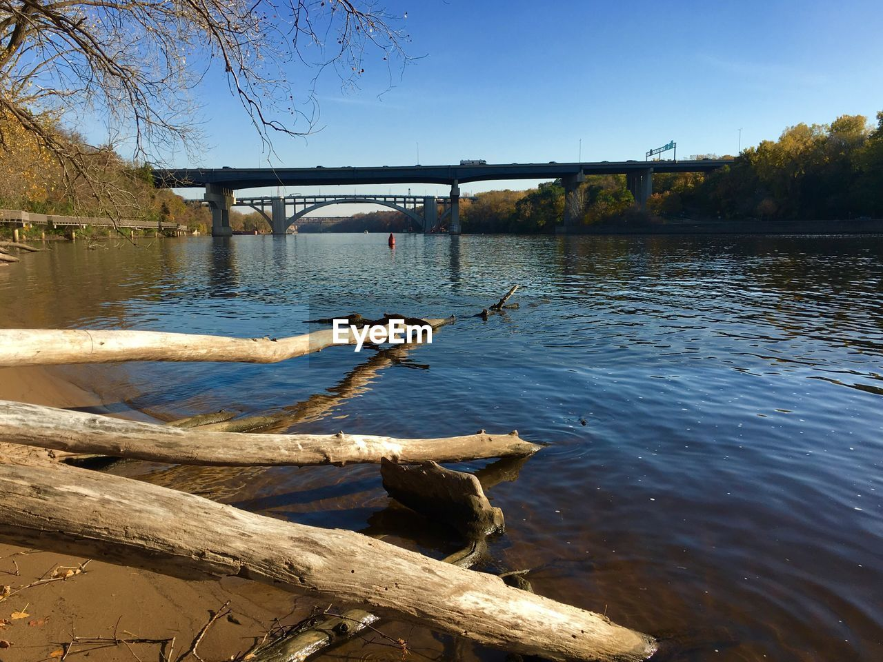 water, tree, river, nature, sky, bridge, connection, transportation, built structure, day, bridge - man made structure, architecture, plant, wood - material, no people, tranquility, sunlight, outdoors, wood, driftwood