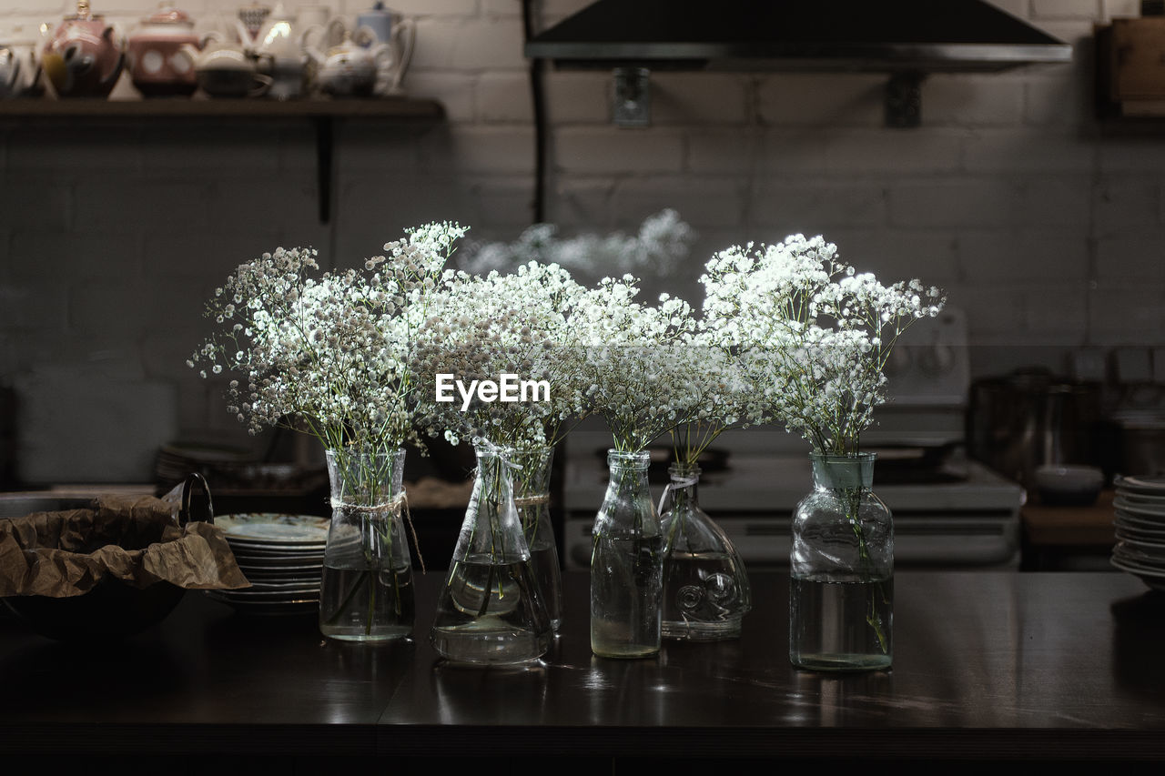 plant, flowering plant, flower, table, freshness, no people, nature, glass - material, vase, focus on foreground, vulnerability, fragility, beauty in nature, growth, outdoors, day, transparent, close-up, architecture