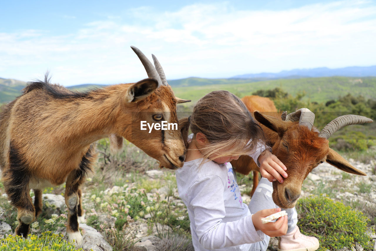 Girl Sitting With Goats Against Landscape