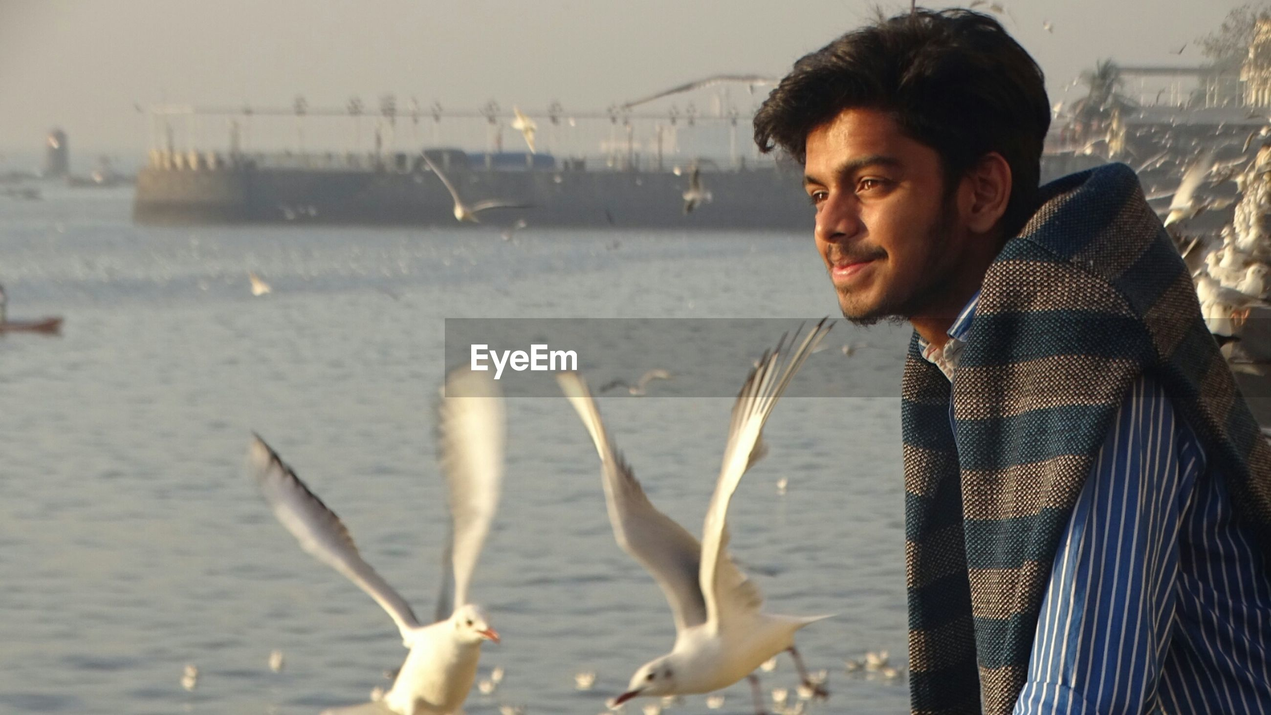 Smiling man looking away with seagulls flying over sea