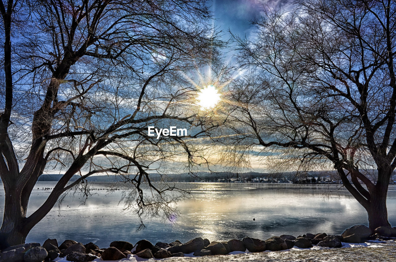 SCENIC VIEW OF BARE TREES BY LAKE AGAINST SKY DURING WINTER