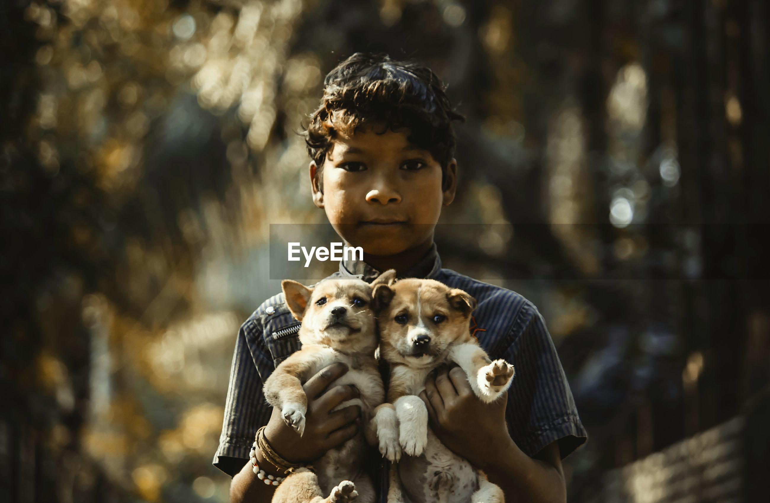 Portrait of serious boy holding puppies at public park