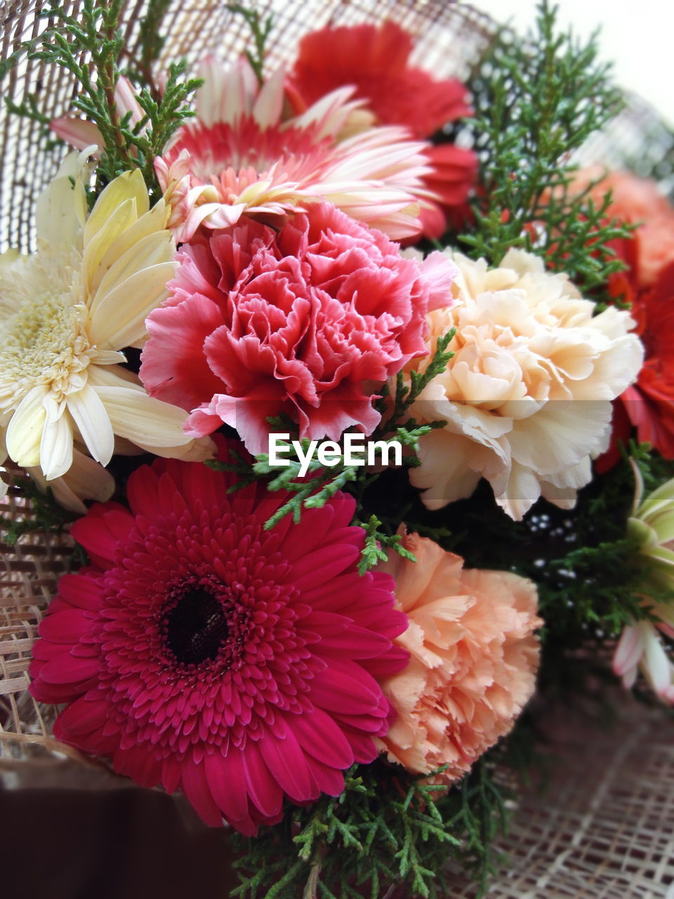 flower, freshness, petal, fragility, beauty in nature, no people, flower head, nature, close-up, pink color, bouquet, indoors, day
