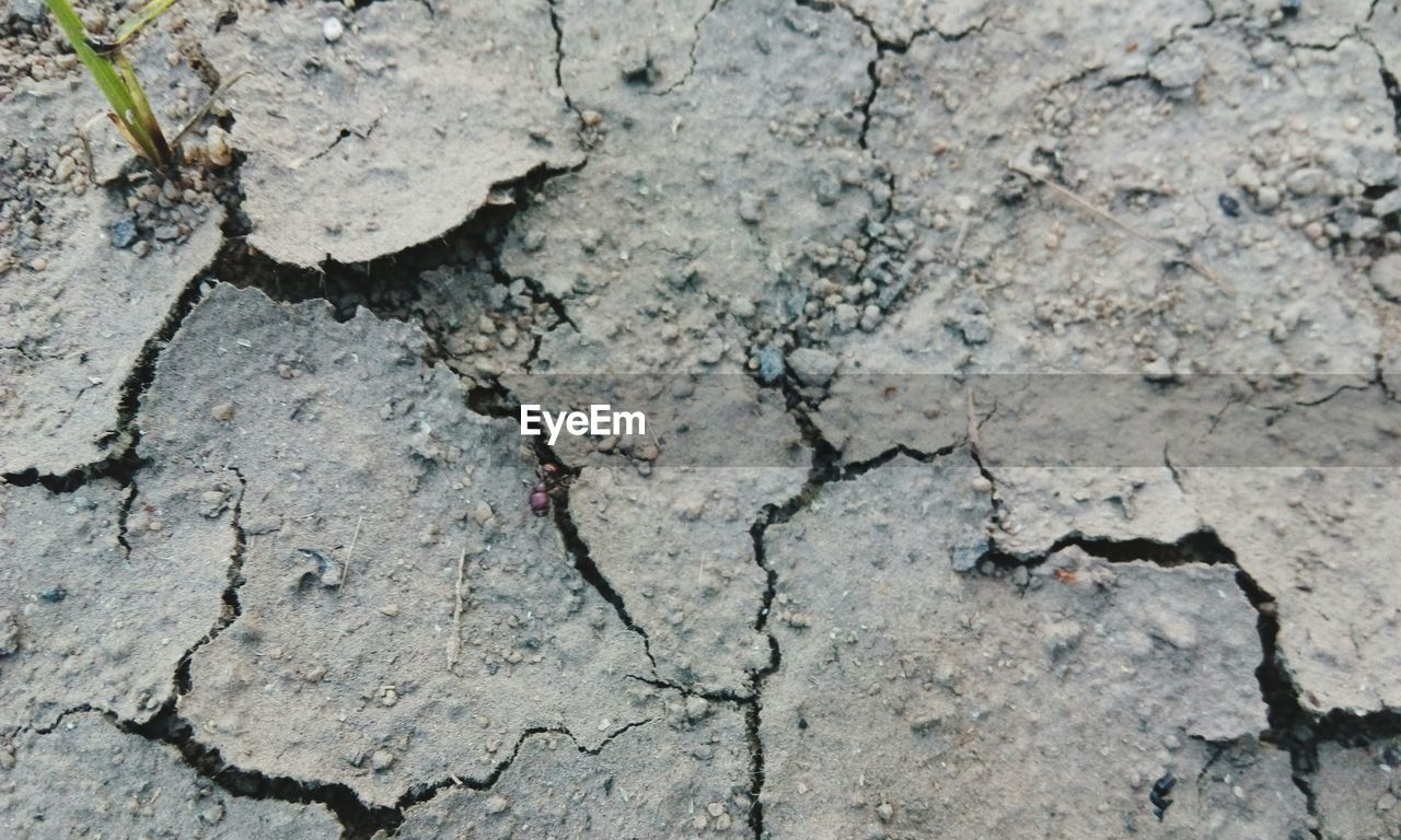textured, cracked, backgrounds, pattern, full frame, no people, rough, close-up, outdoors, land, arid climate, day, nature
