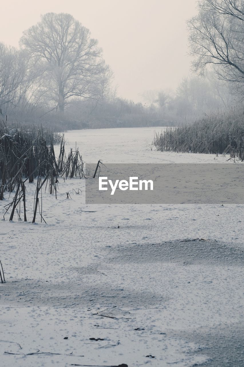 Scenic View Of Frozen Landscape During Winter