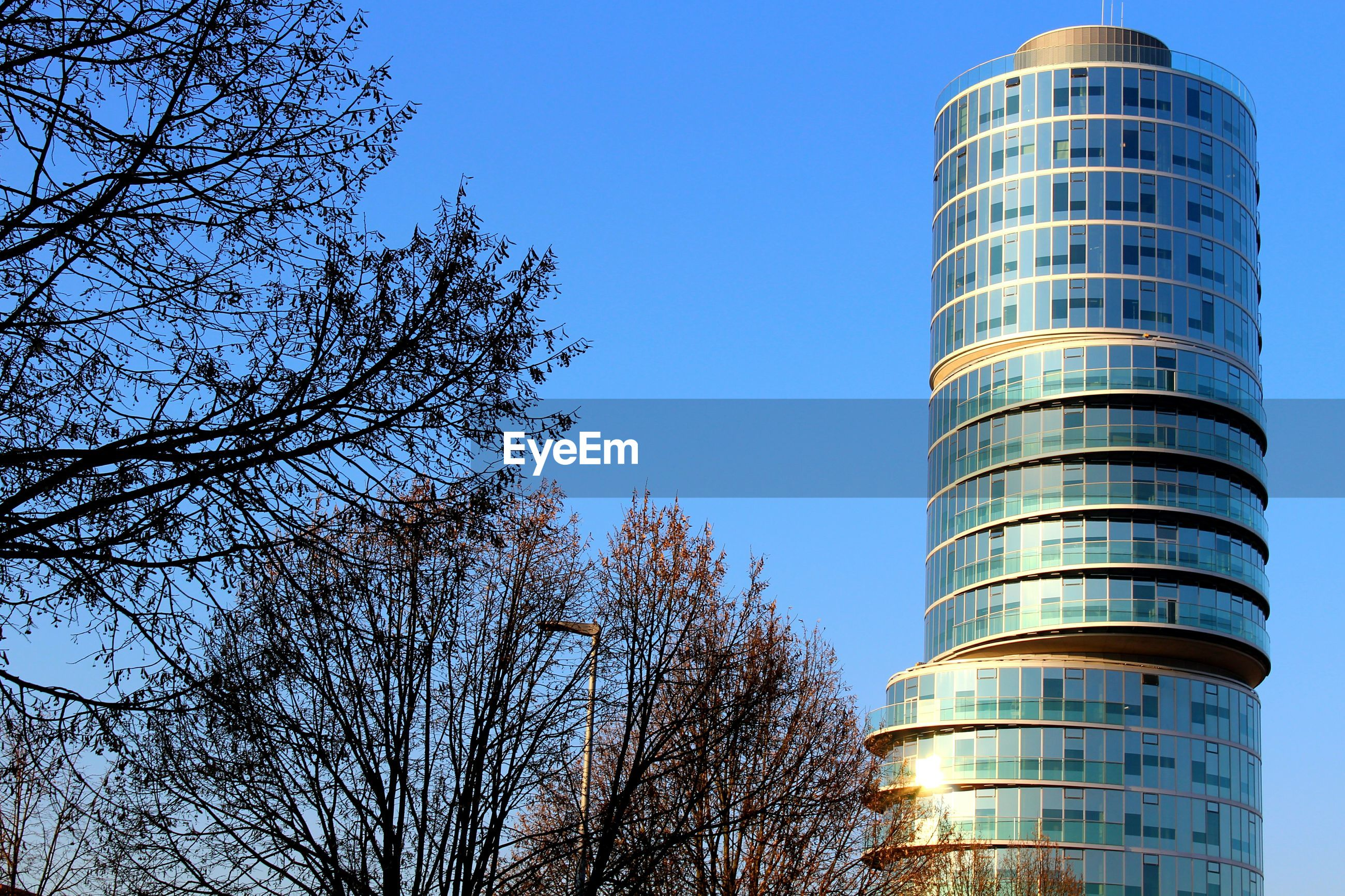 low angle view, clear sky, tall - high, architecture, tower, tree, building exterior, outdoors, city, no people, built structure, sky, day