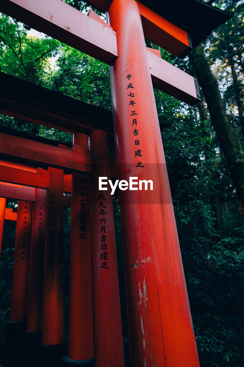 text, red, communication, tree, built structure, script, architecture, non-western script, no people, plant, western script, low angle view, belief, day, religion, sign, nature, outdoors, architectural column, shrine, message