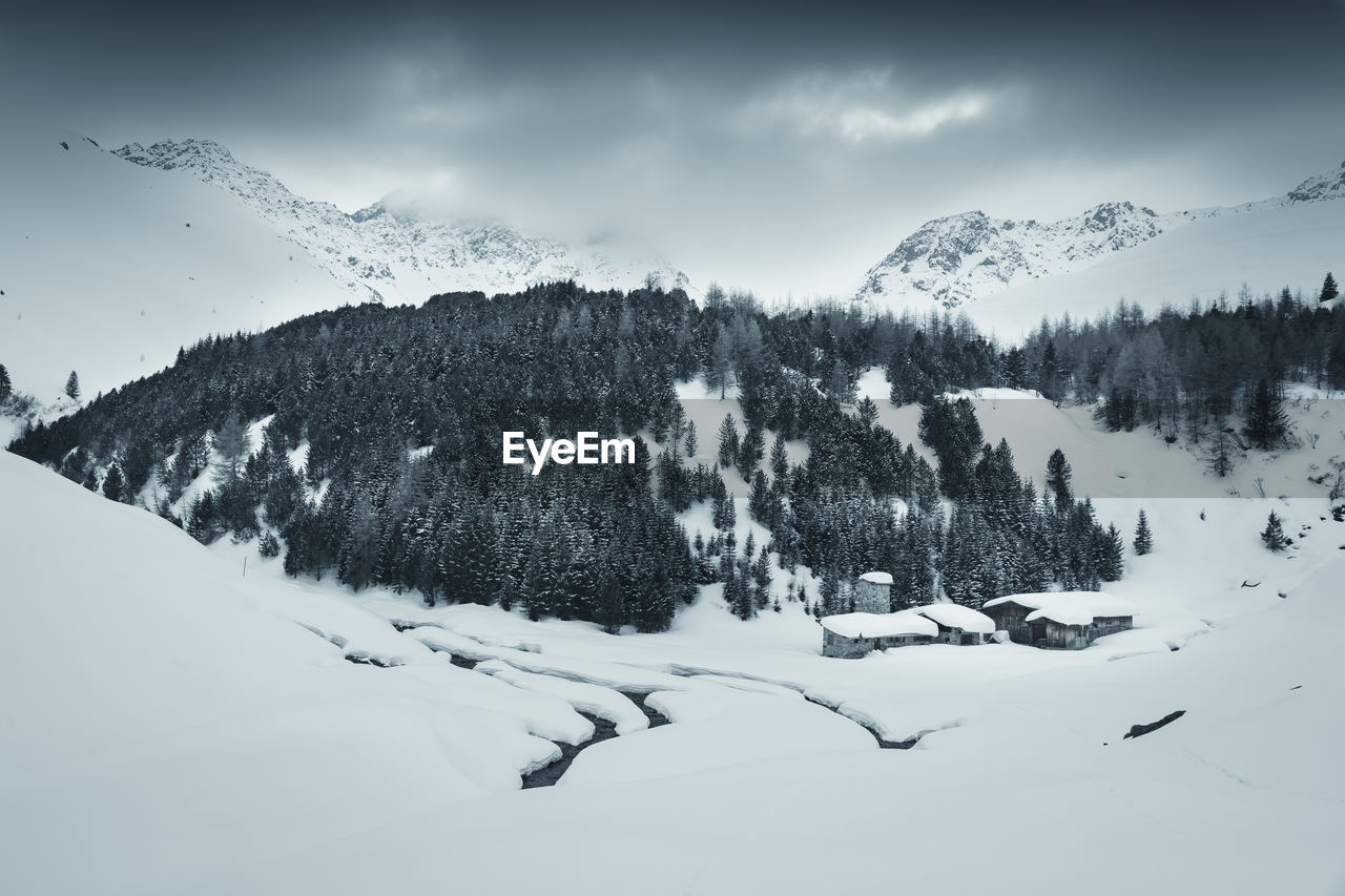 snow, winter, cold temperature, beauty in nature, scenics - nature, tranquil scene, sky, tree, tranquility, plant, environment, cloud - sky, nature, mountain, day, no people, non-urban scene, landscape, covering, snowcapped mountain, mountain peak, coniferous tree