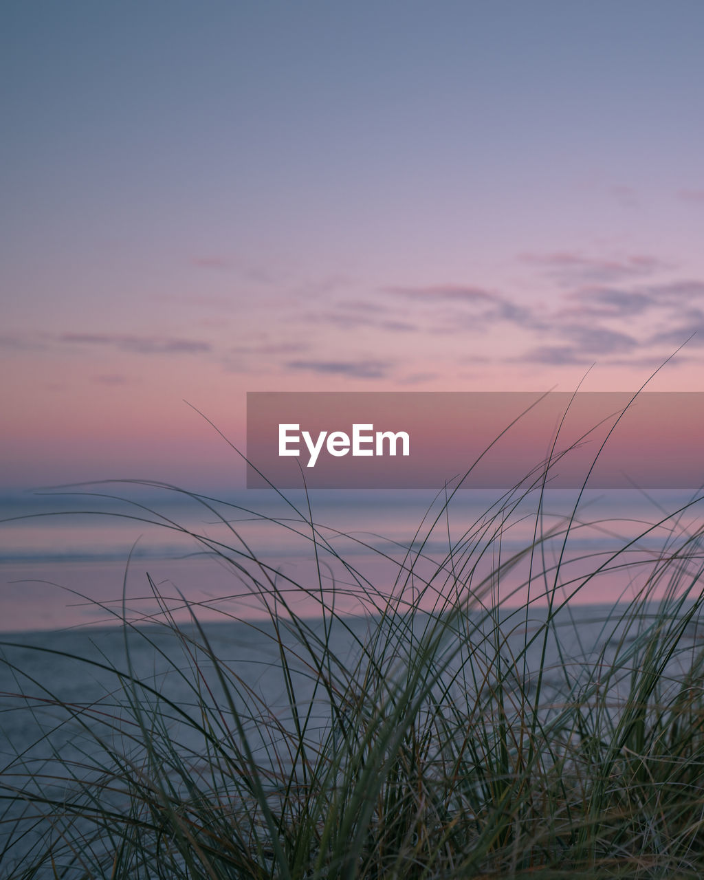 sunset, sky, beauty in nature, scenics - nature, tranquility, tranquil scene, plant, nature, no people, cloud - sky, water, grass, sea, orange color, idyllic, horizon, non-urban scene, growth, horizon over water, outdoors, marram grass