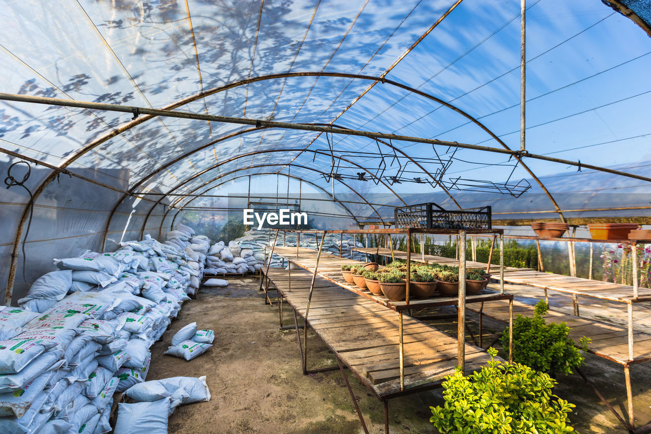 greenhouse, architecture, indoors, day, built structure, nature, plant, sky, no people, transparent, glass - material, growth, botany, transportation, connection, direction, blue, tree, beauty in nature, plant nursery