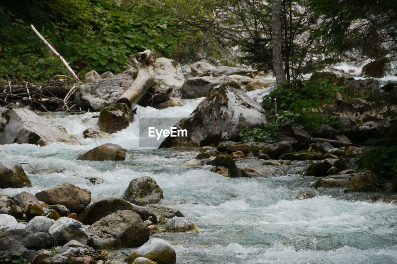 water, rock, motion, land, forest, solid, rock - object, nature, river, beauty in nature, flowing water, tree, no people, environment, blurred motion, day, flowing, scenics - nature, outdoors, stream - flowing water, power in nature