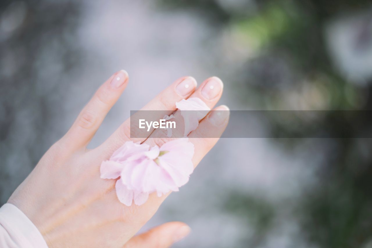 Cropped image of woman hand with flowers