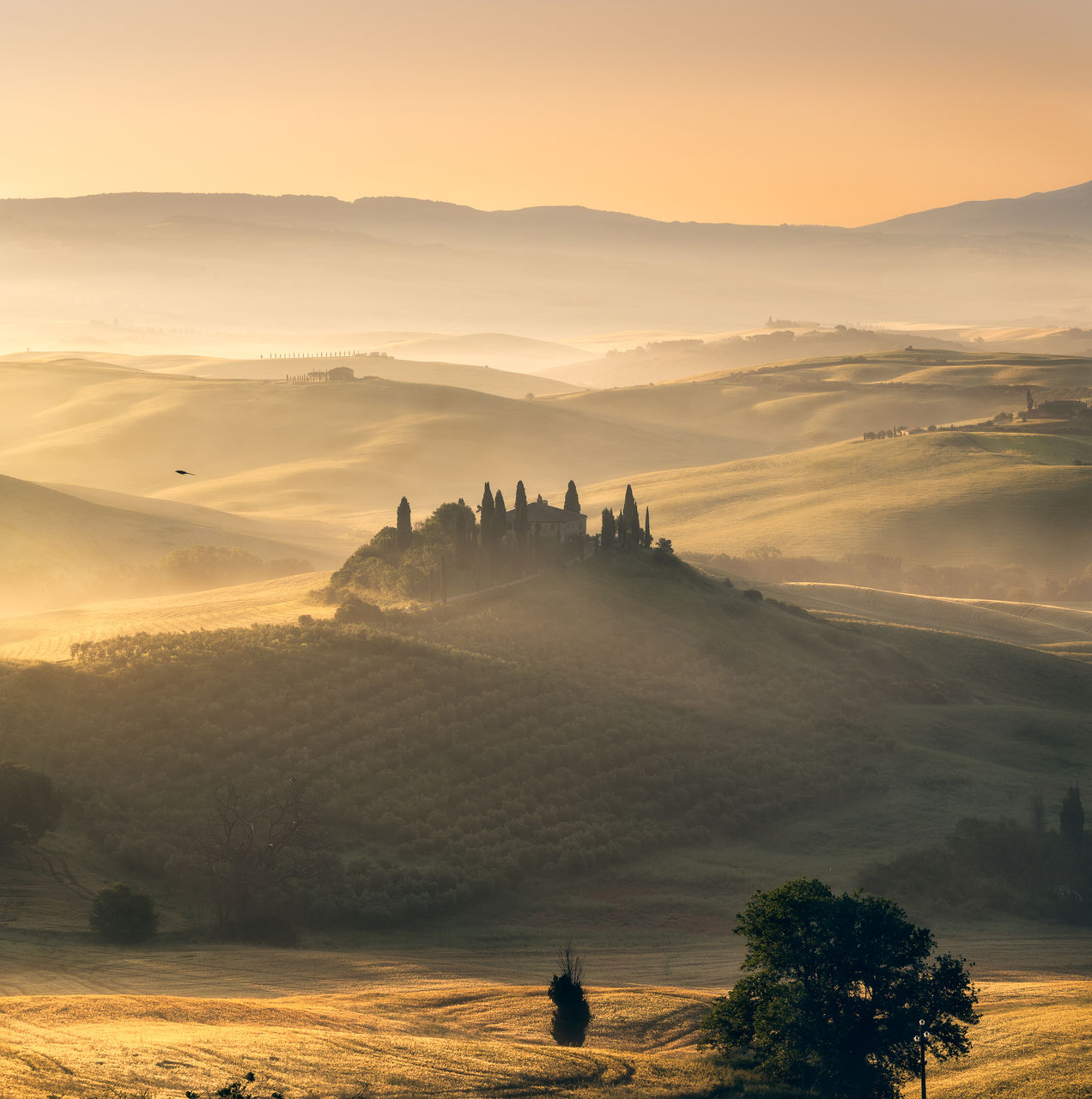 sky, scenics - nature, beauty in nature, tree, sunset, plant, tranquil scene, mountain, nature, orange color, landscape, architecture, tranquility, fog, environment, non-urban scene, travel destinations, built structure, idyllic, building exterior, no people, outdoors, ancient civilization