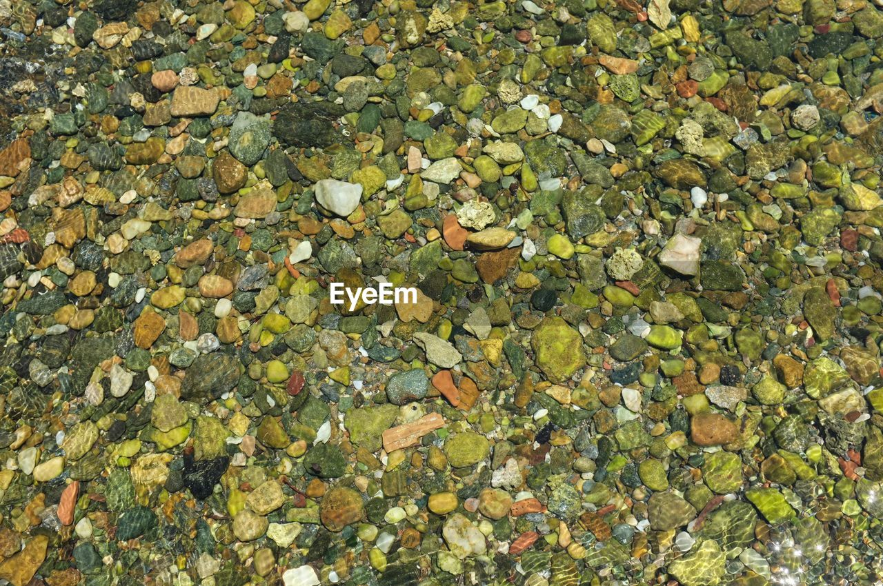 full frame, leaf, plant part, backgrounds, day, nature, no people, high angle view, abundance, water, beauty in nature, rock, stone - object, stone, solid, change, autumn, large group of objects, leaves, floating, outdoors, floating on water, pebble, fall