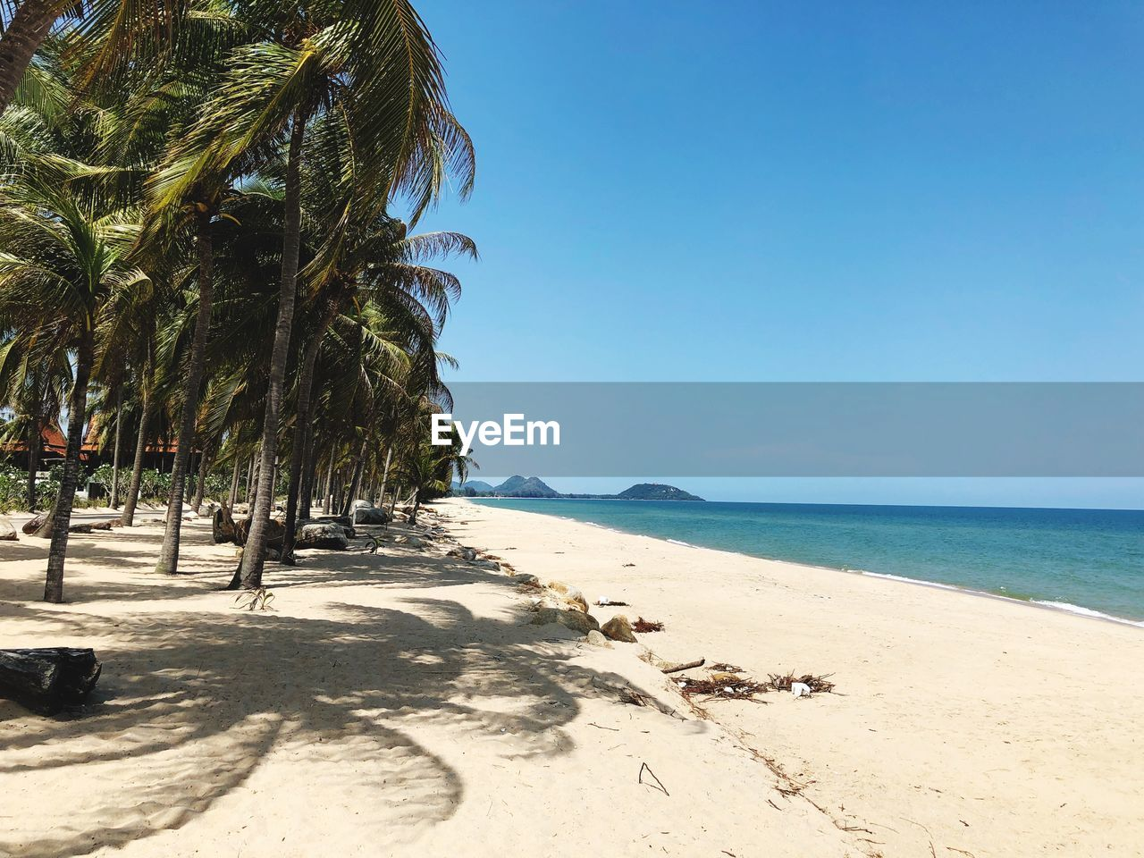 sea, beach, sky, water, palm tree, tropical climate, land, tree, sand, tranquil scene, beauty in nature, clear sky, nature, plant, tranquility, horizon, horizon over water, scenics - nature, sunlight, no people, outdoors, coconut palm tree, tropical tree, palm leaf