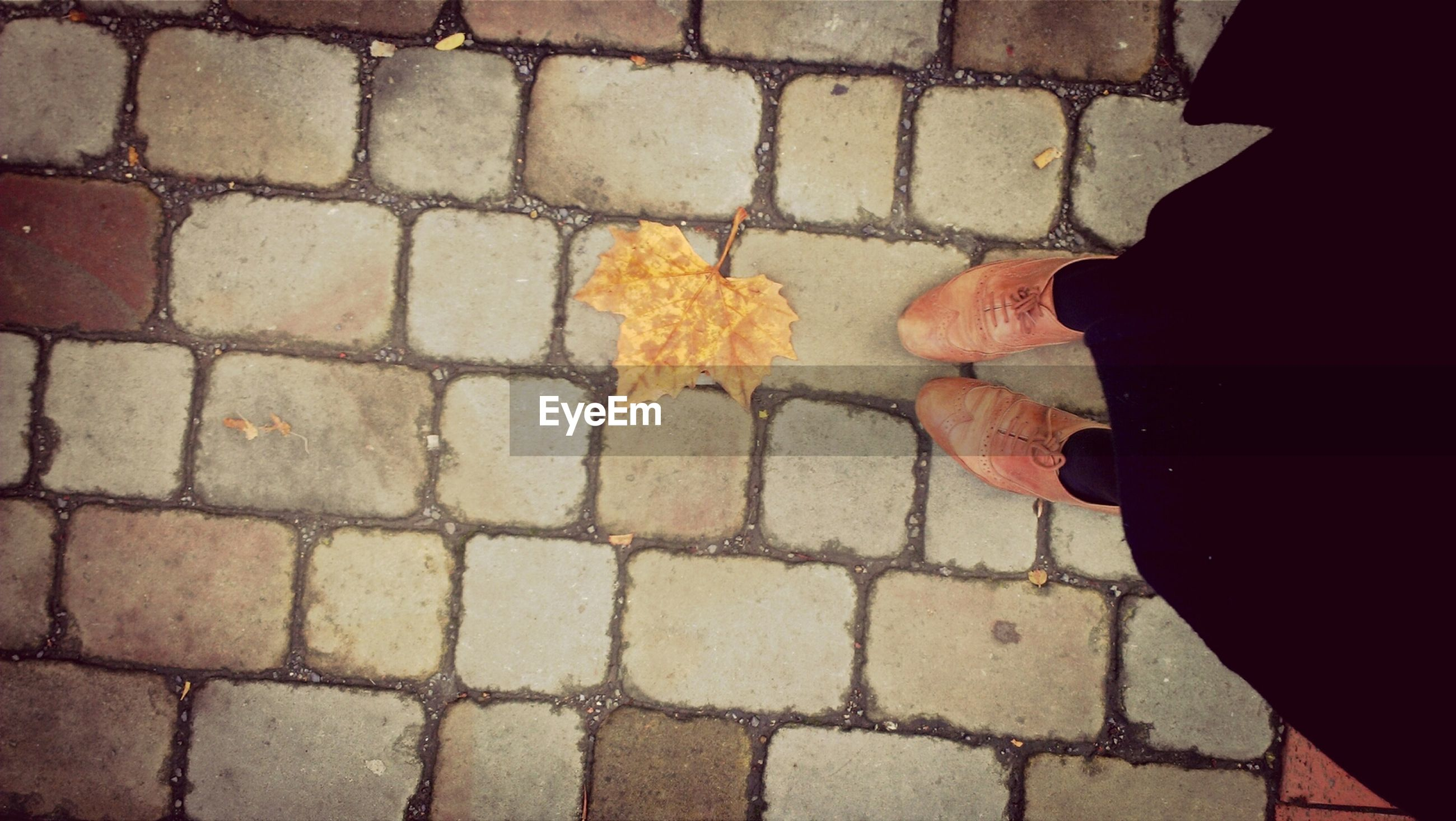 cobblestone, street, paving stone, lifestyles, low section, men, high angle view, unrecognizable person, standing, person, pattern, day, textured, outdoors, footpath, leisure activity, sidewalk