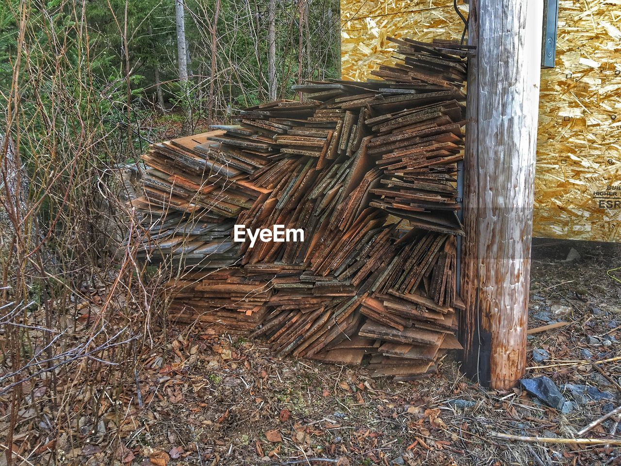 stack, lumber industry, wood - material, deforestation, environmental issues, log, timber, no people, field, tree trunk, day, heap, outdoors, woodpile, large group of objects, forestry industry, grass, nature, tree, close-up