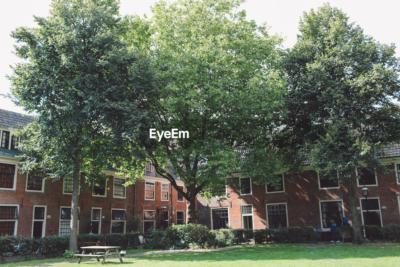 architecture, building exterior, built structure, tree, house, day, no people, residential building, outdoors, grass, city