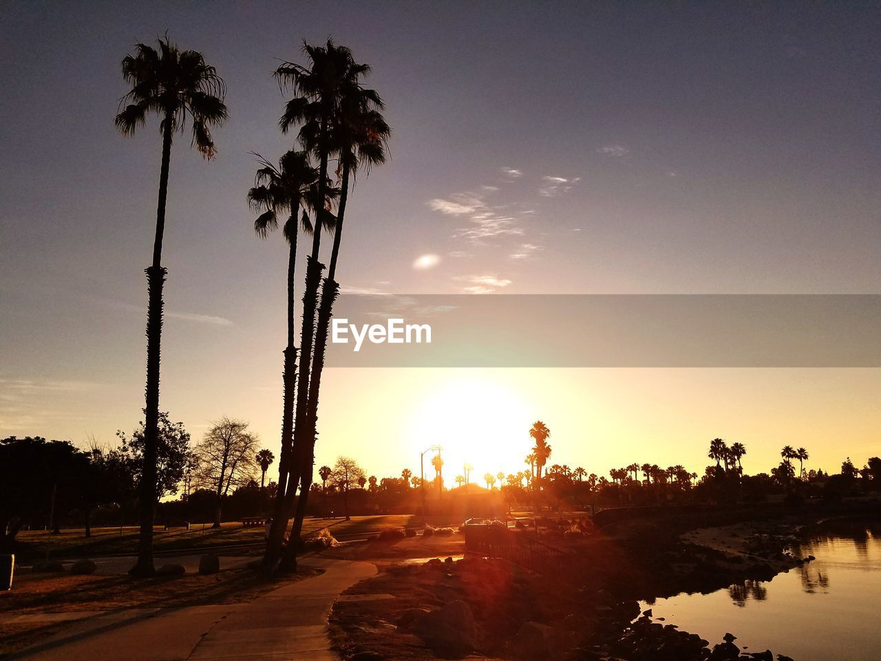 palm tree, tree, sunset, silhouette, sun, tranquil scene, beauty in nature, sunbeam, nature, sky, scenics, tranquility, outdoors, no people, sunlight, growth, tree trunk, travel destinations, water, day