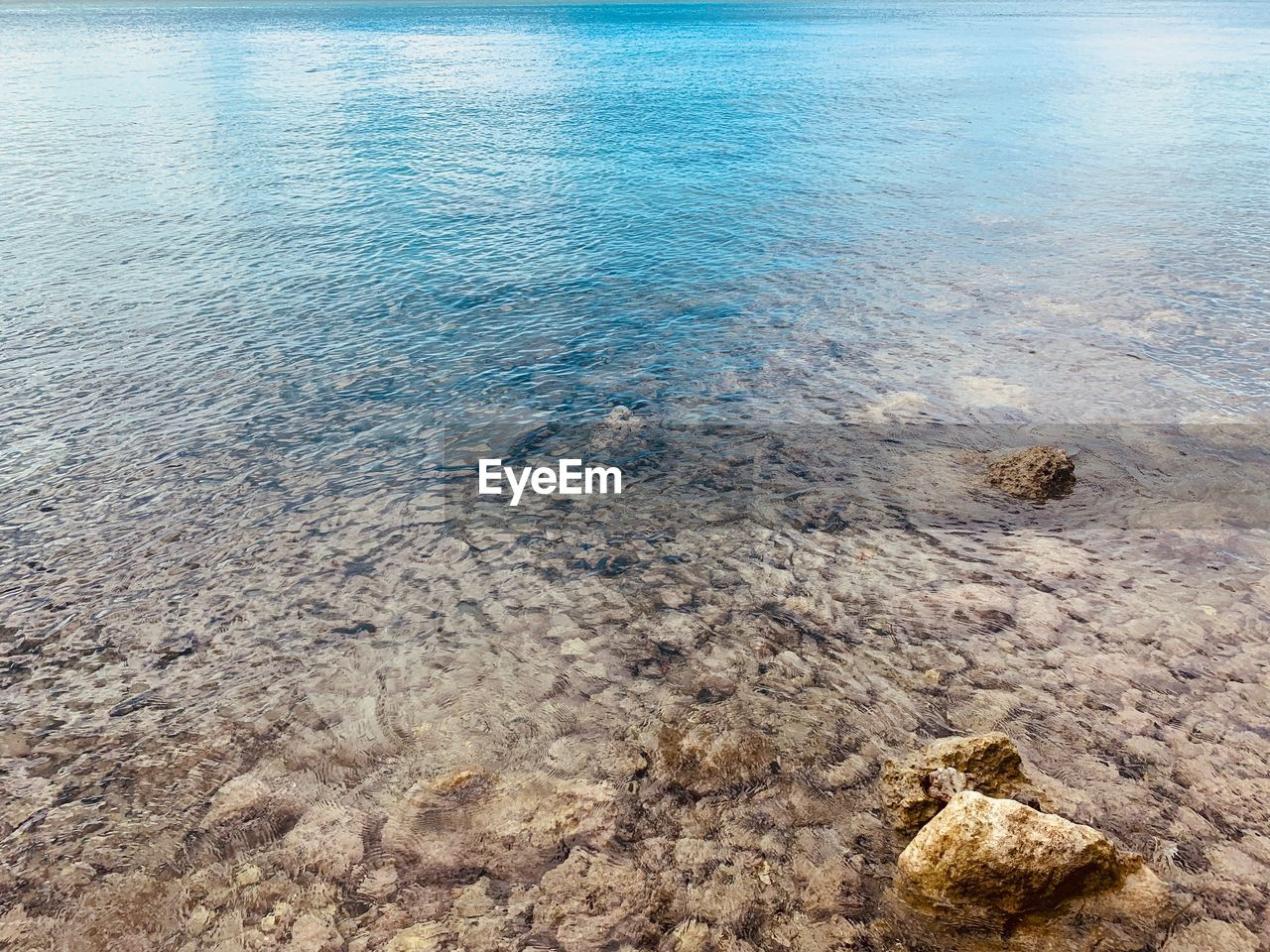 water, sea, tranquility, beauty in nature, rock, no people, day, nature, scenics - nature, tranquil scene, rock - object, solid, land, beach, high angle view, outdoors, idyllic, shallow, transparent, purity, rocky coastline