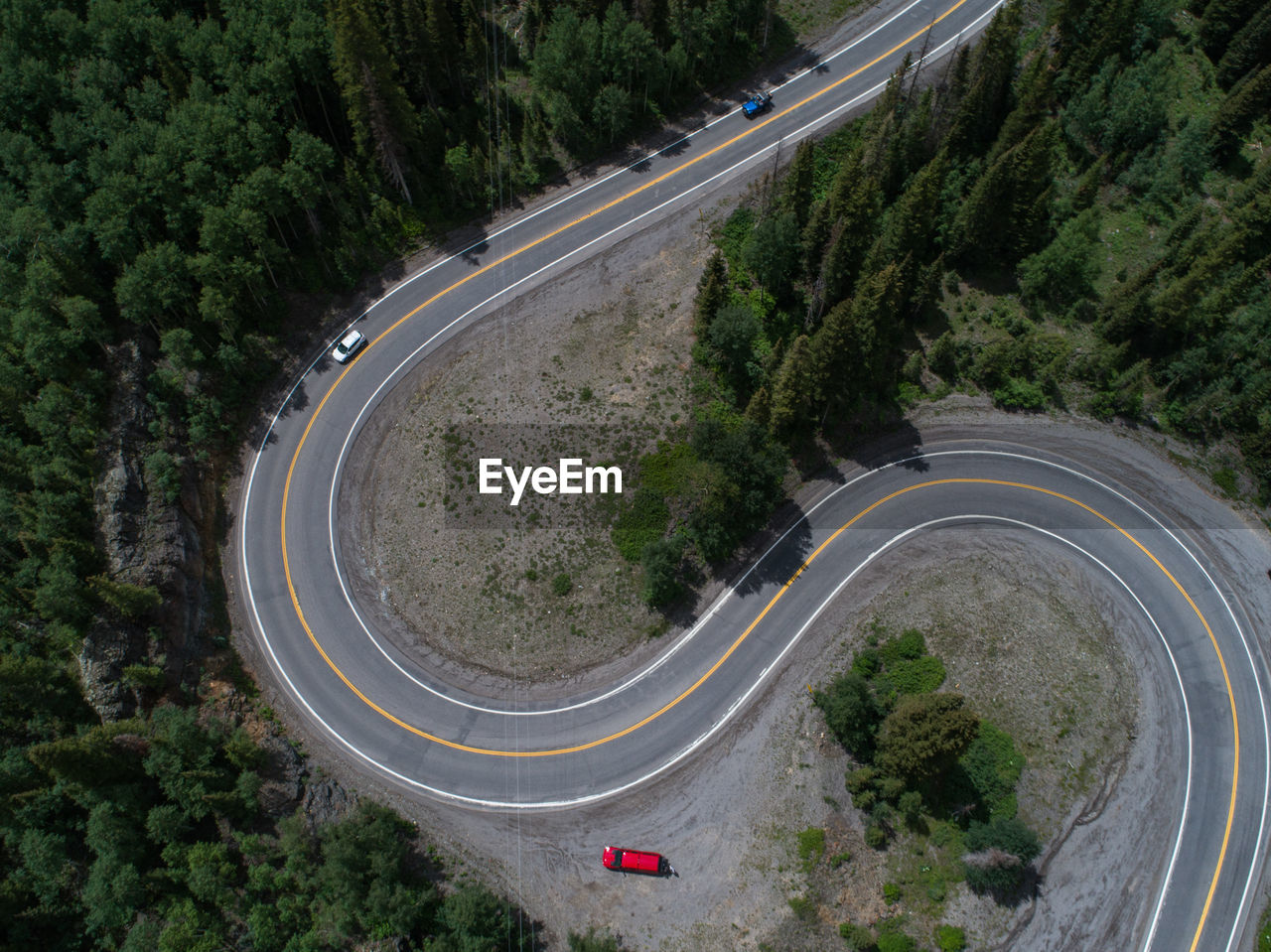 road, transportation, plant, tree, road marking, high angle view, sign, marking, symbol, no people, curve, highway, car, mode of transportation, motor vehicle, direction, land vehicle, motion, the way forward, nature, multiple lane highway