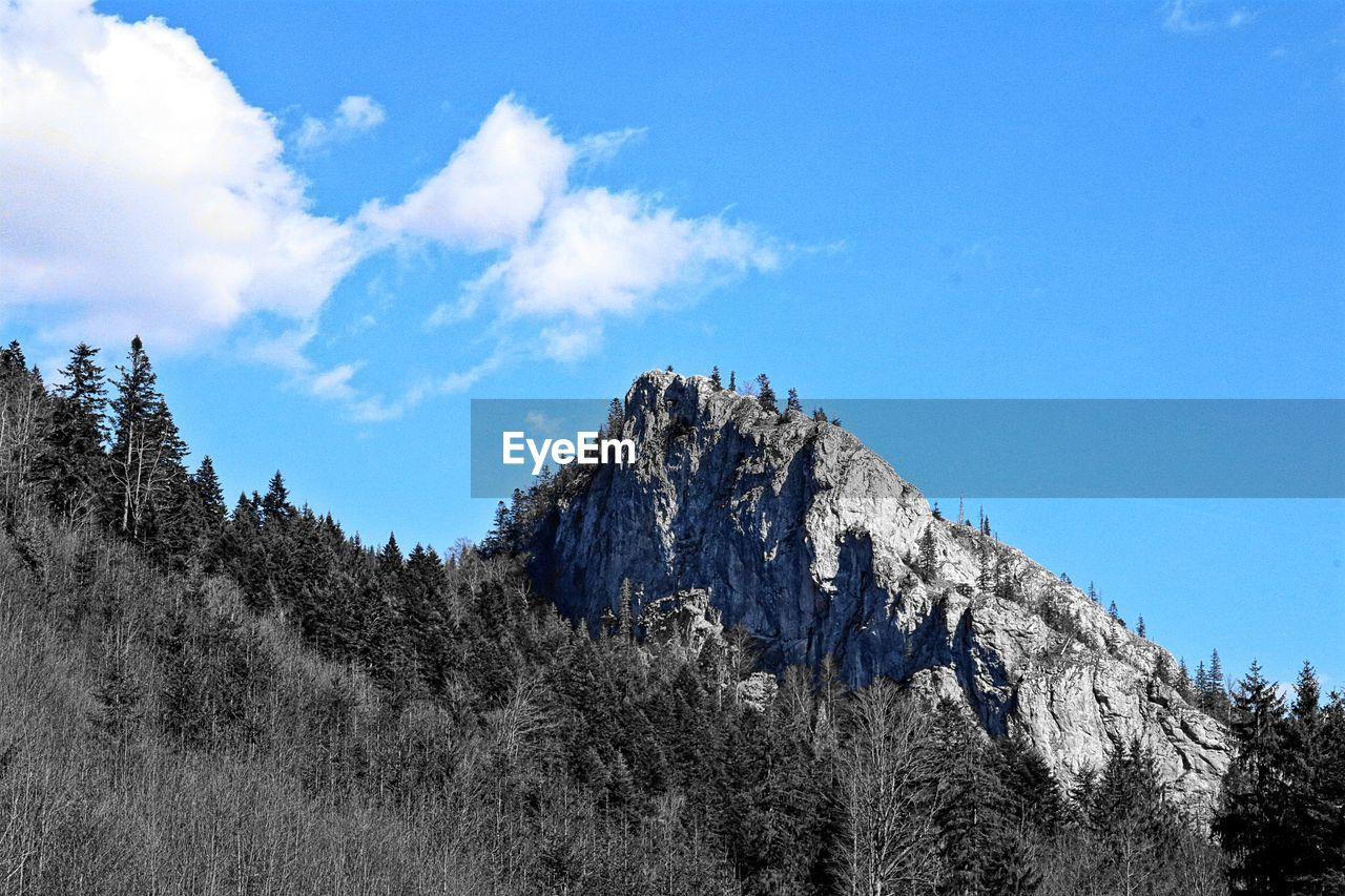 sky, tree, mountain, tranquility, tranquil scene, beauty in nature, scenics - nature, plant, nature, cloud - sky, blue, no people, low angle view, non-urban scene, land, day, environment, landscape, forest, growth, mountain peak, formation, high