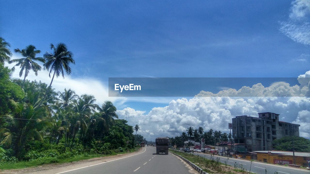tree, sky, road, plant, palm tree, transportation, direction, nature, the way forward, building exterior, tropical climate, cloud - sky, city, architecture, day, built structure, land vehicle, no people, mode of transportation, motor vehicle, outdoors