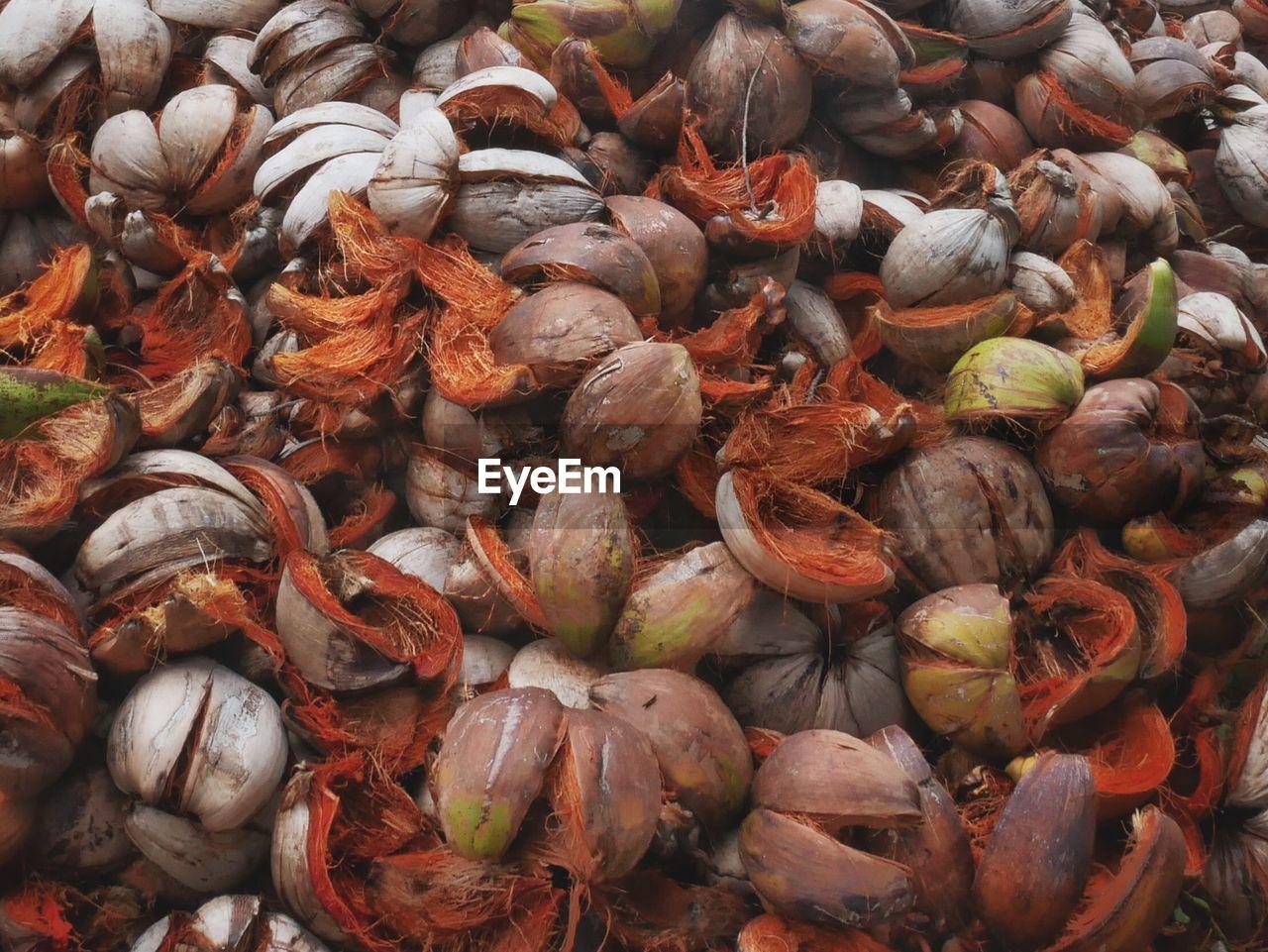 Full Frame Shot Of Coconut Shells Pile
