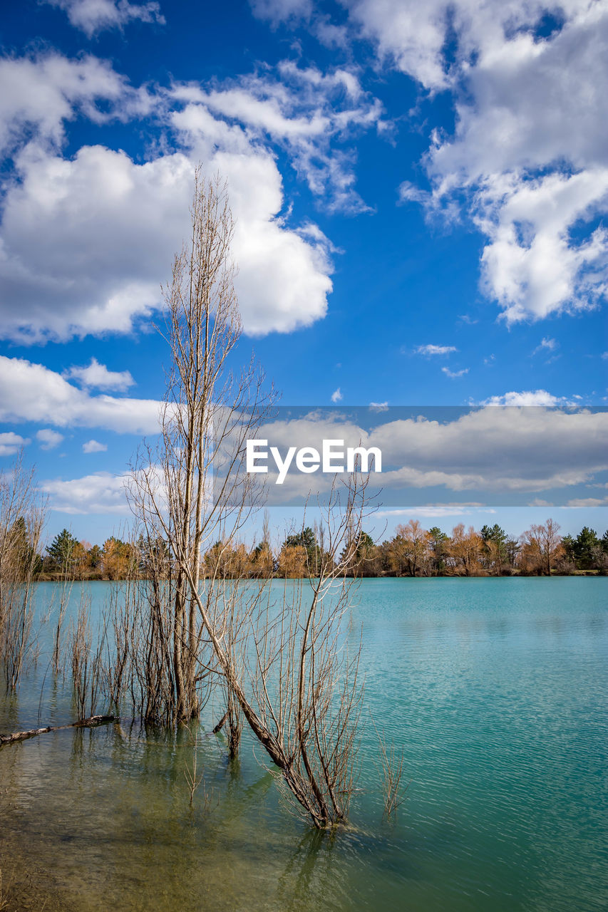 cloud - sky, water, sky, tranquility, tranquil scene, scenics - nature, beauty in nature, lake, plant, tree, day, no people, nature, non-urban scene, land, idyllic, outdoors, growth, blue