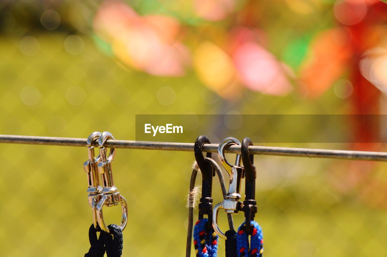 focus on foreground, metal, close-up, day, safety, no people, protection, security, hanging, outdoors, padlock, nature, lock, love, emotion, positive emotion, love lock, rain, sunlight, raindrop