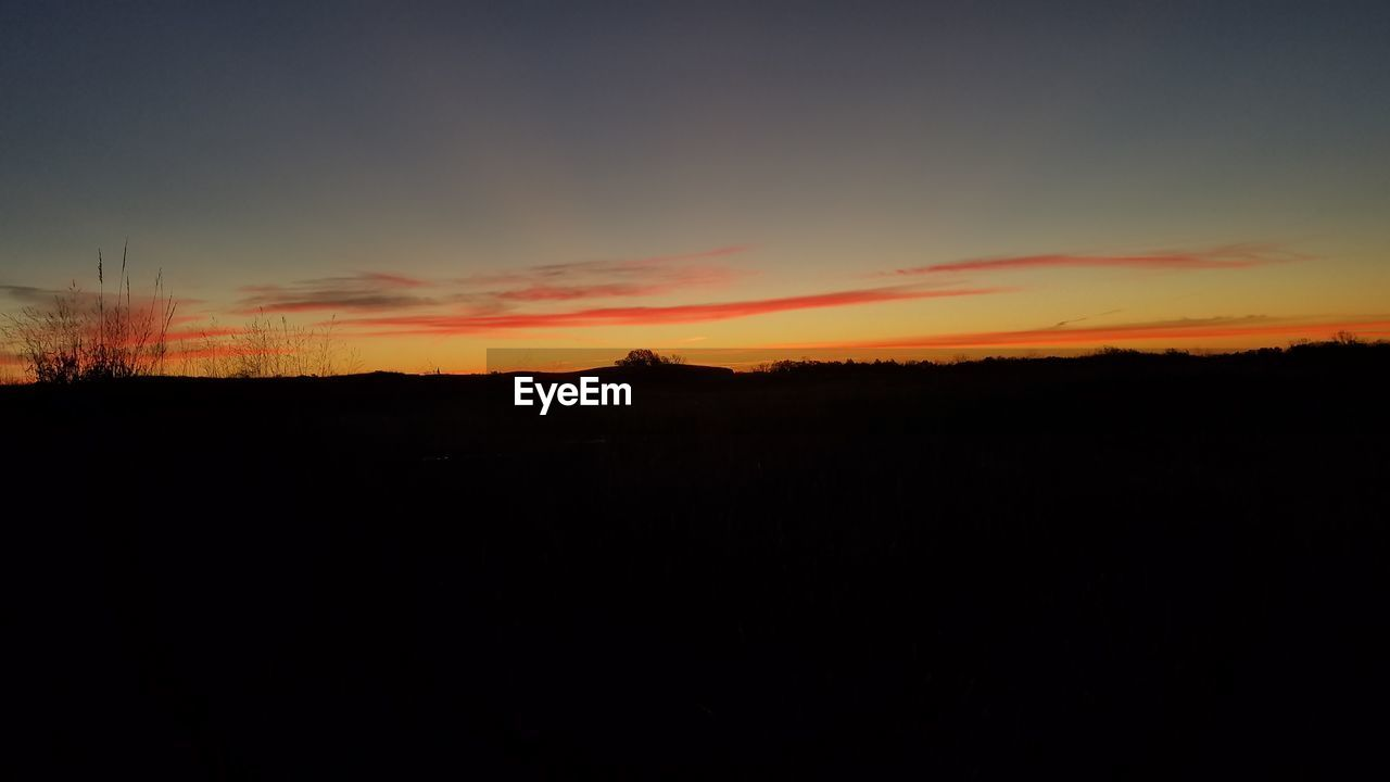 sunset, silhouette, tranquil scene, nature, scenics, orange color, tranquility, landscape, beauty in nature, dark, sky, no people, idyllic, field, outdoors, tree, day