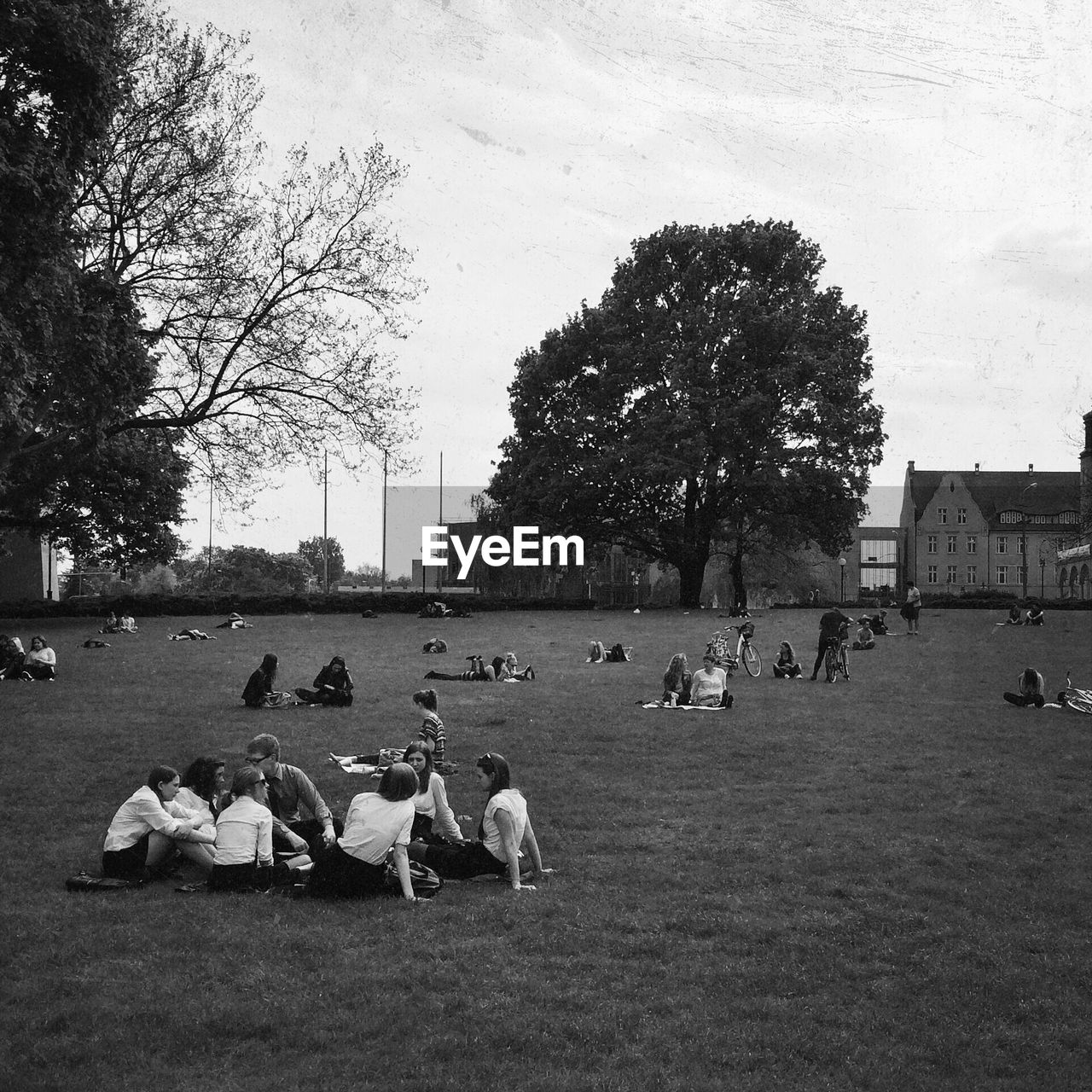 PEOPLE RELAXING ON GRASS