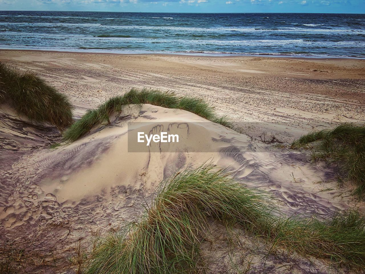 water, sea, land, beach, beauty in nature, sand, scenics - nature, tranquility, plant, nature, tranquil scene, day, no people, sky, horizon, horizon over water, grass, wave, idyllic, outdoors, marram grass