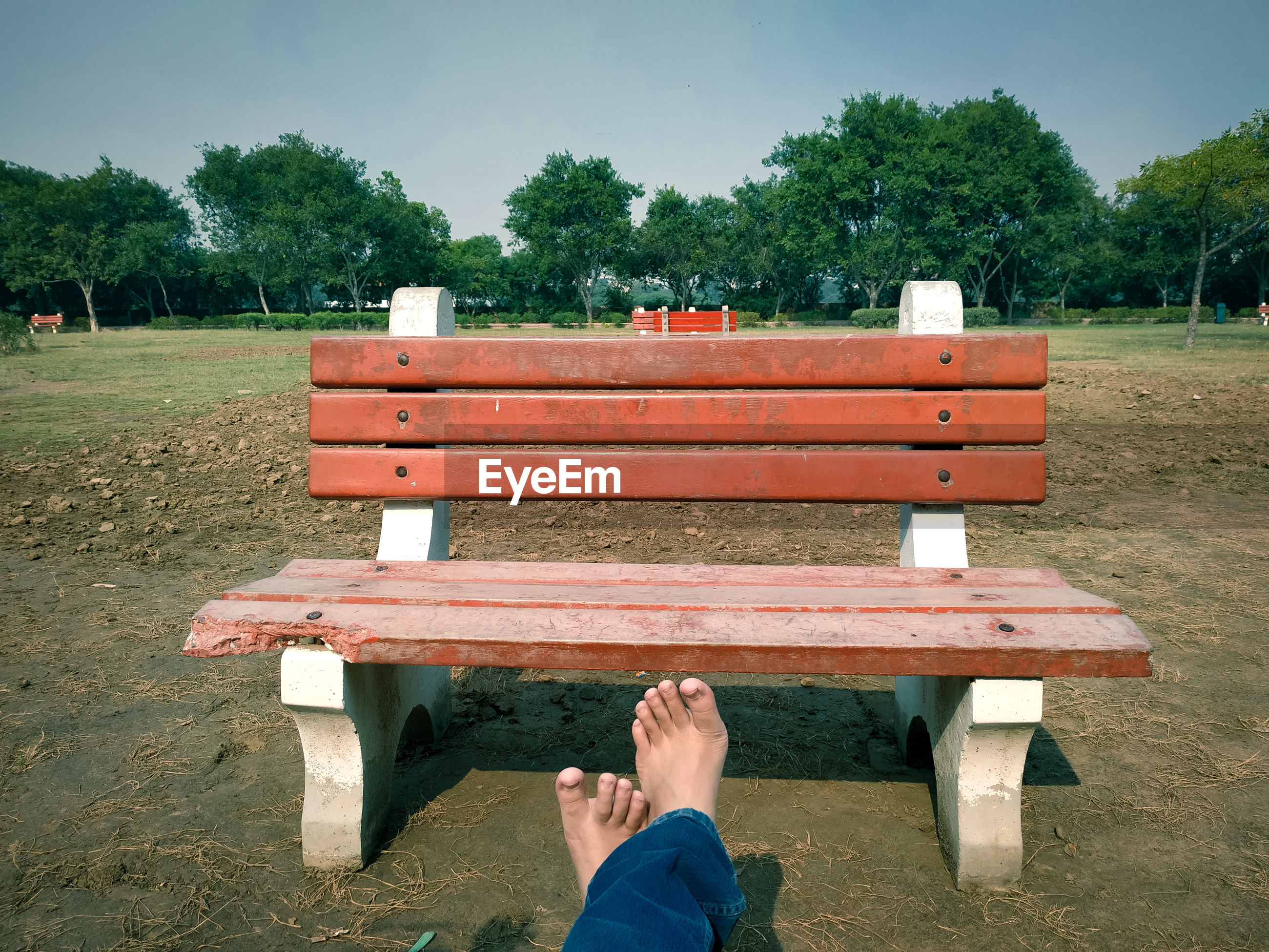 Low section of person sitting on park bench