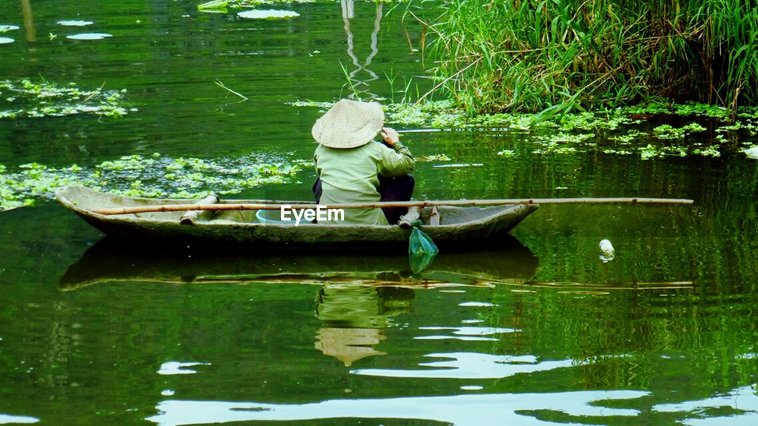 water, reflection, lake, waterfront, animal themes, full length, swimming, animals in the wild, wildlife, nature, pond, green color, tree, day, bird, one animal, men, outdoors