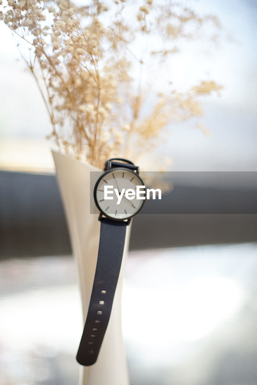 Close-up of wristwatch in flower vase on table
