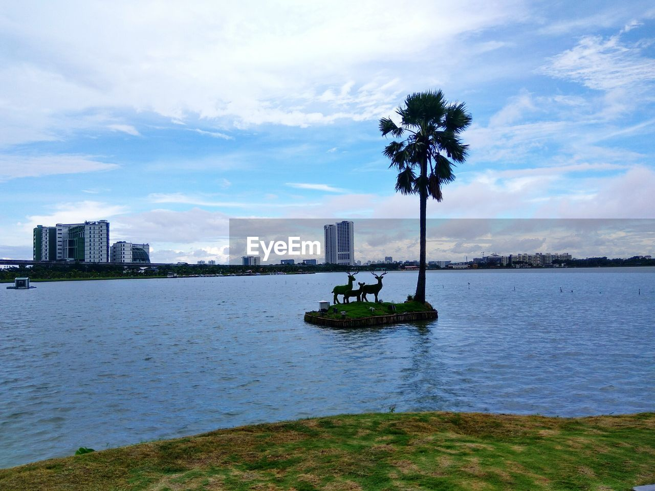 cloud - sky, water, sky, tree, architecture, waterfront, building exterior, built structure, outdoors, sea, skyscraper, city, day, transportation, palm tree, nautical vessel, nature, growth, no people, beauty in nature, cityscape, urban skyline