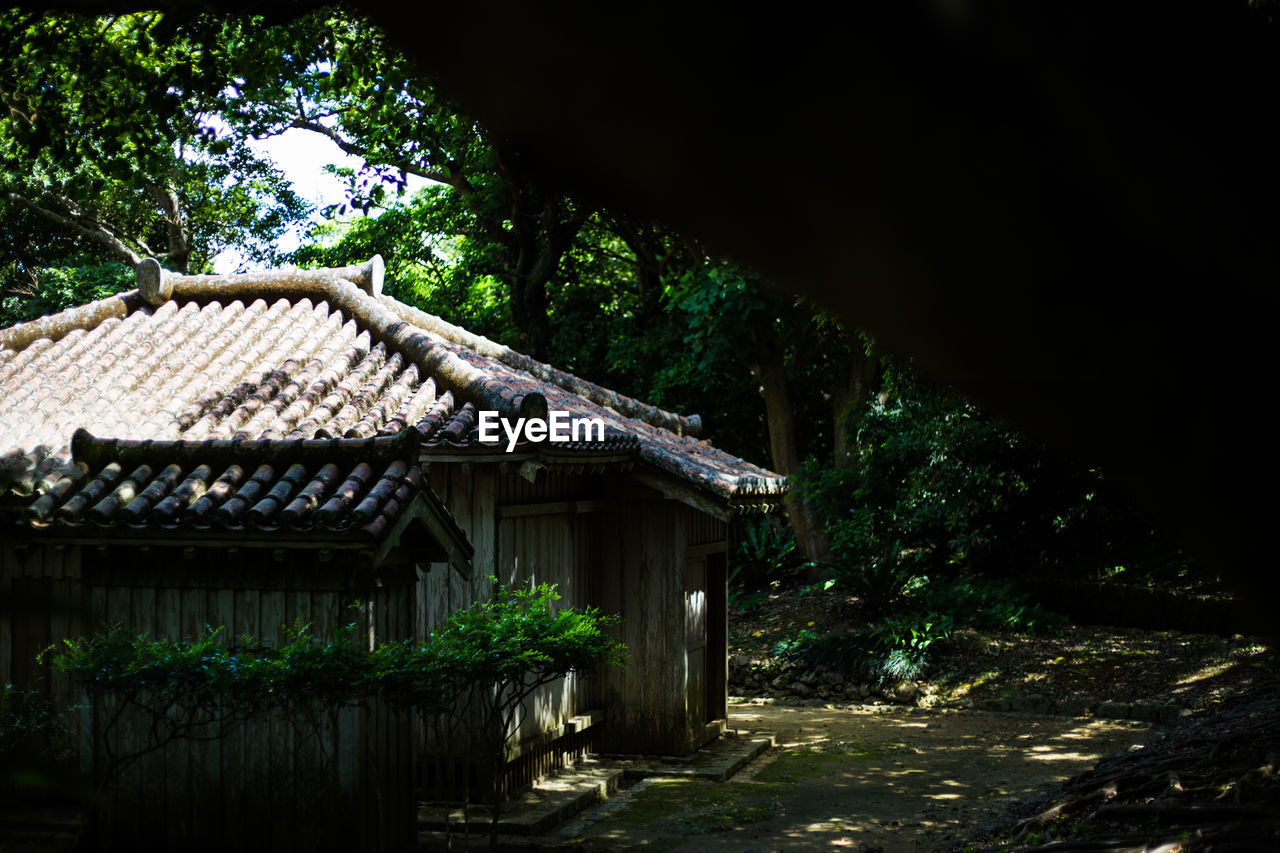 tree, architecture, built structure, roof, building exterior, day, no people, outdoors, house, traditional building, nature, forest, beauty in nature