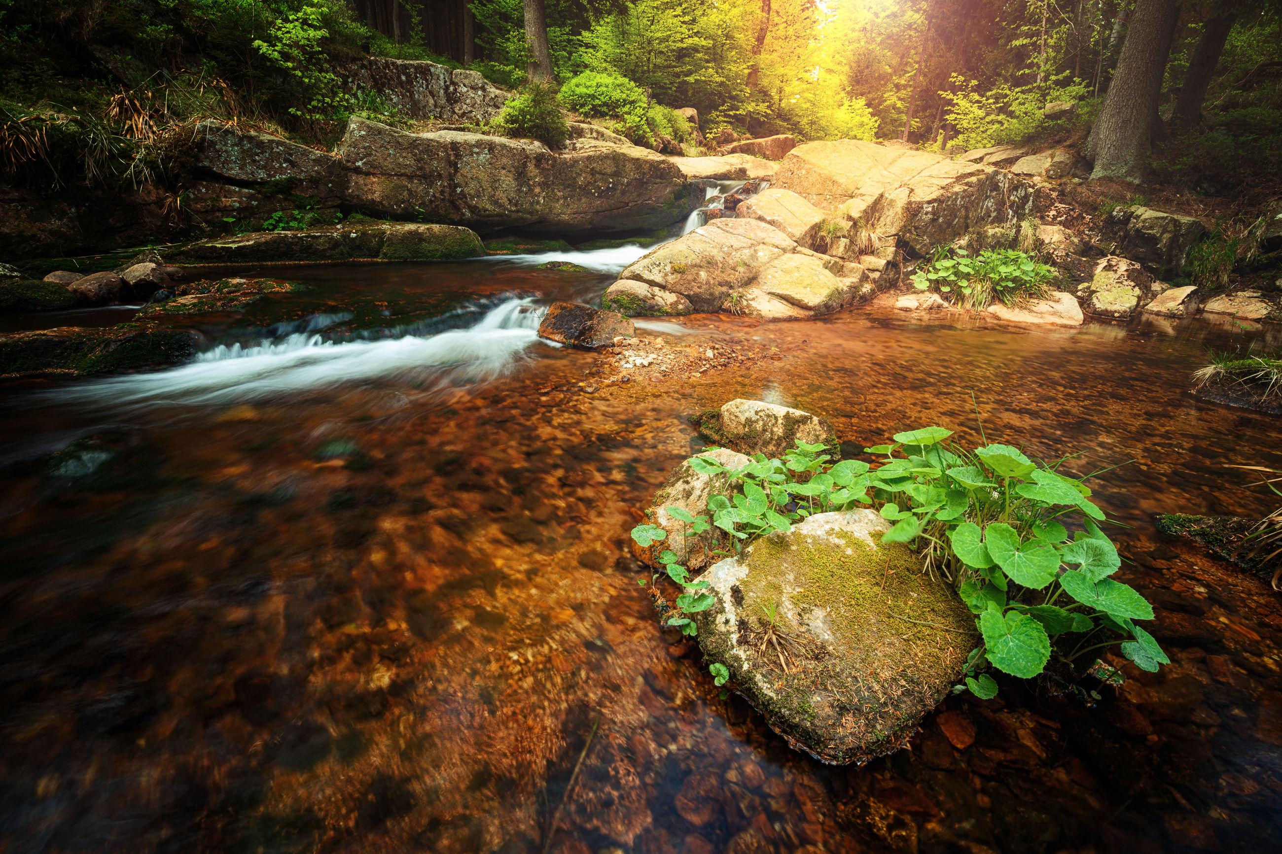 SCENIC VIEW OF ROCKS IN RIVER